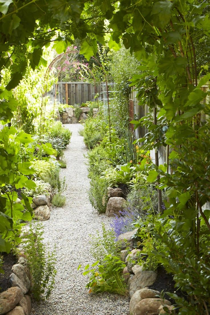 Vegetable garden with pathway down centre