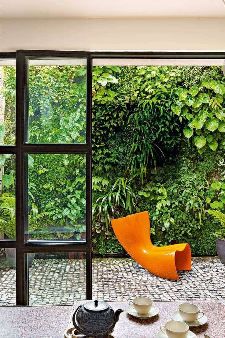 courtyard garden with green garden wall